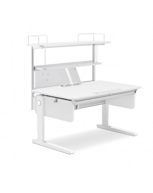 MOLL - Flex Deck Champion Compact