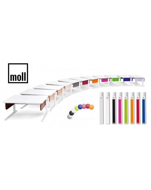 MOLL Champion - Kolorowe boki